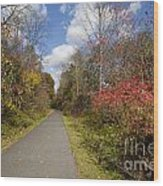 Rail Trail Wood Print