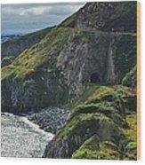 Railroad Through Bray Head, Ireland Wood Print