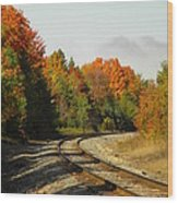 Railroad Tracks Wood Print