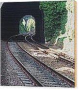 Railroad Tracks At Conway Castle, Wales  Wood Print