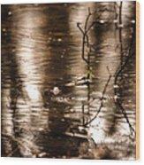 Rain Drops On Water Wood Print