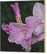 Rain Flower 1 Lavender Wood Print