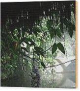 Rain Forest Overhang Wood Print