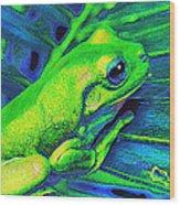 Rain Forest Tree Frog Wood Print