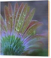 Rain Petals Wood Print