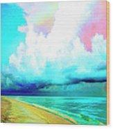 Rain Squall Na Pali Coast Wood Print