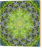 Lluvia Mandala Wood Print