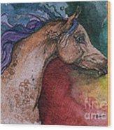 Rainbow Arabian Wood Print