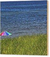 Rainbow Beach Umbrella Wood Print