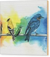 Rainbow Birds Wood Print