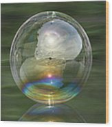 Sun Halo Rainbow Bubble Wood Print