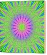 Rainbow Burst Wood Print