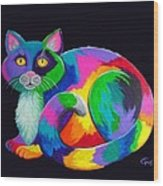 Rainbow Calico Wood Print