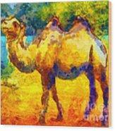 Rainbow Camel Wood Print
