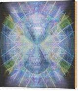 Rainbow Chalice Cell Isphere Matrix Wood Print