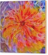 Rainbow Coronal Wood Print