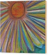 Rainbow Daisies Wood Print