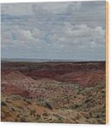Rainbow Desert Wood Print
