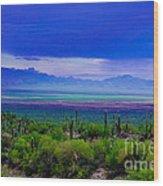 Rainbow Desert Landscape Wood Print