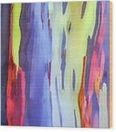 Rainbow Eucalyptus 2 Wood Print