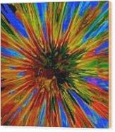 Rainbow Exuberance Wood Print