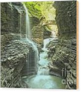 Rainbow Falls Bridge Wood Print