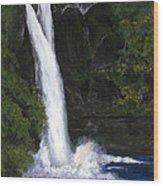 Rainbow Falls Hilo Hawaii Wood Print