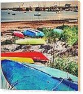 Rainbow Fleet Wood Print