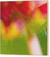 Rainbow Flower Wood Print
