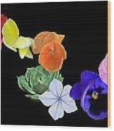 Rainbow Flowers  Wood Print