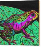 Rainbow Frog 3 Wood Print