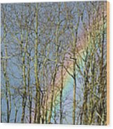 Rainbow Hiding Behind The Trees Wood Print