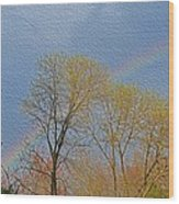 Rainbow In Spring Wood Print