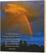 Rainbow In The Cloud Wood Print