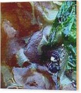Rainbow Kelp Wood Print