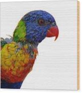Rainbow Lorikeet Wood Print