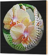 Rainbow Orchids Baseball Square Wood Print
