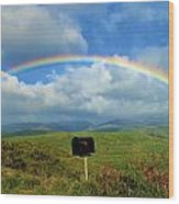 Rainbow Over A Mailbox Wood Print by Kicka Witte