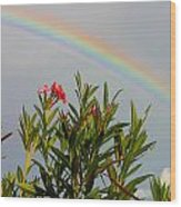 Rainbow Over Flower Wood Print