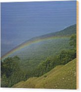 rainbow over Maggie valley Wood Print