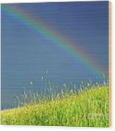Rainbow Over Pasture Field Wood Print