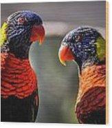 Rainbow Parrot Wood Print
