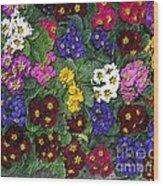 Rainbow Petals Wood Print