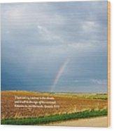 Rainbow Promise Wood Print