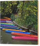Rainbow River Wood Print