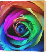 Rainbow Rose Wood Print by Juergen Weiss