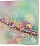 Rainbow Smoke Drops Wood Print
