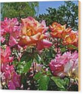 Rainbow Sorbet Roses Wood Print by Denise Mazzocco