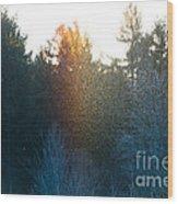 Rainbow Sparkles Wood Print