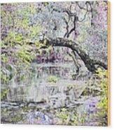 Rainbow Springs Wood Print